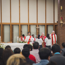 Confirmations 2019 photo album